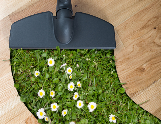 Spring-Cleaning_iStock_000021273995Small_crop1